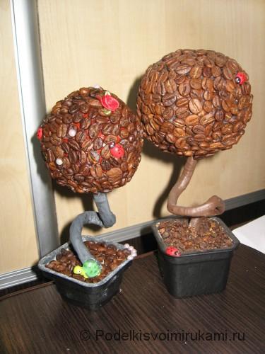 Как сделать кофейное дерево своими руками. Итоговый вид поделки.