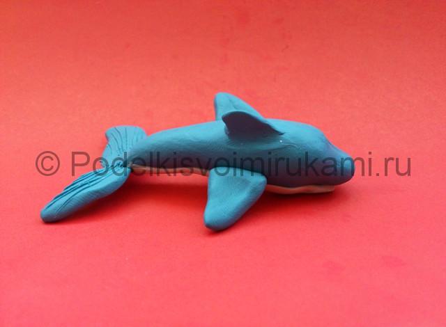 Дельфин из пластилина. Шаг №7.