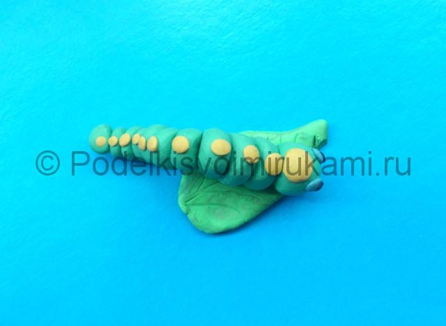 Гусеница из пластилина. Итоговый вид поделки. Фото 1.