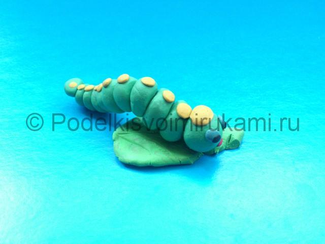 Гусеница из пластилина. Шаг №9.