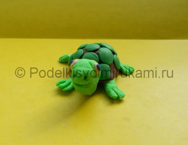 Как слепить черепаху из пластилина. Итоговая поделка. Фото 1.