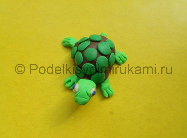 Как слепить черепаху из пластилина. Итоговая поделка. Фото 2.