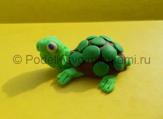 Как слепить черепаху из пластилина. Итоговая поделка. Фото 3.