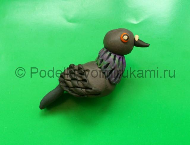 Лепка голубя из пластилина. Шаг №9.