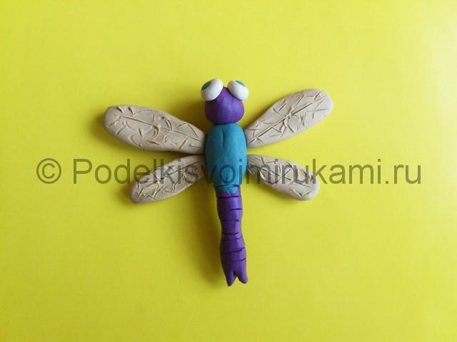 Лепка стрекозы из пластилина. Шаг №9.