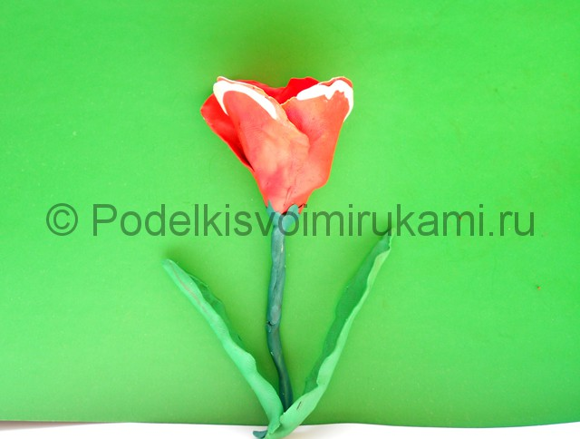 Как слепить тюльпан из пластилина. Шаг №10. Фото 10.2.