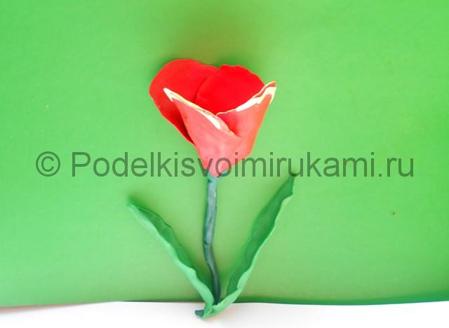 Как слепить тюльпан из пластилина. Шаг №10. Фото 10.3.