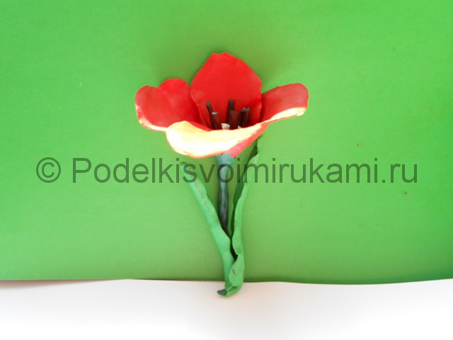 Как слепить тюльпан из пластилина. Шаг №10. Фото 10.4.