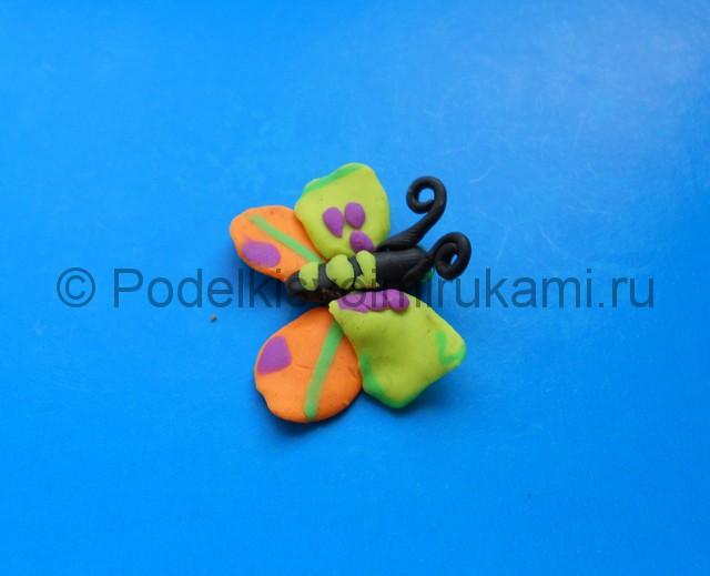 Лепка бабочки из пластилина. Шаг №9. Фото 9.1.