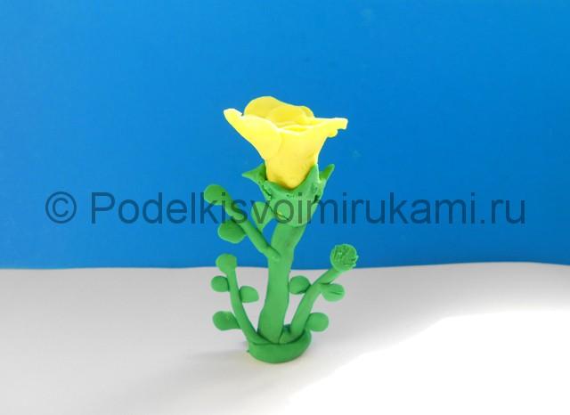 Лепка жёлтой розы из пластилина. Итоговая поделка. Фото 4.
