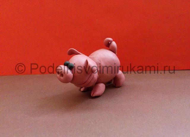 Свинка из пластилина. Итоговый вид поделки. Фото 3.