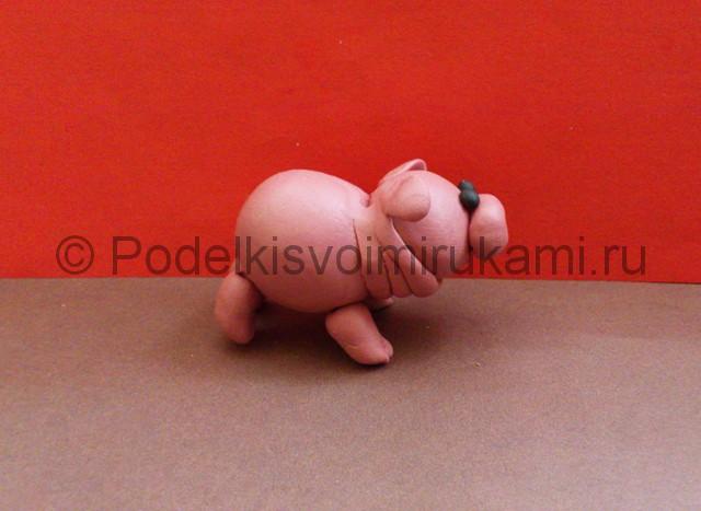 Свинка из пластилина. Шаг №9.
