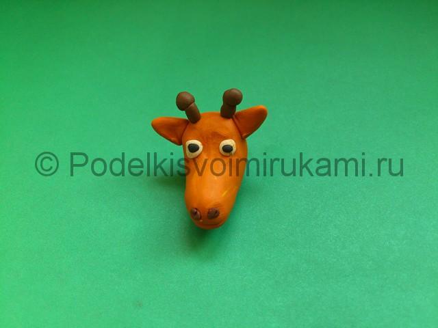Жираф из пластилина. Шаг №4.