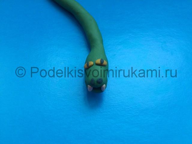 Змея из пластилина. Шаг №5.