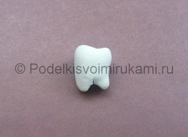 Зуб из пластилина. Урок лепки. Шаг №4.