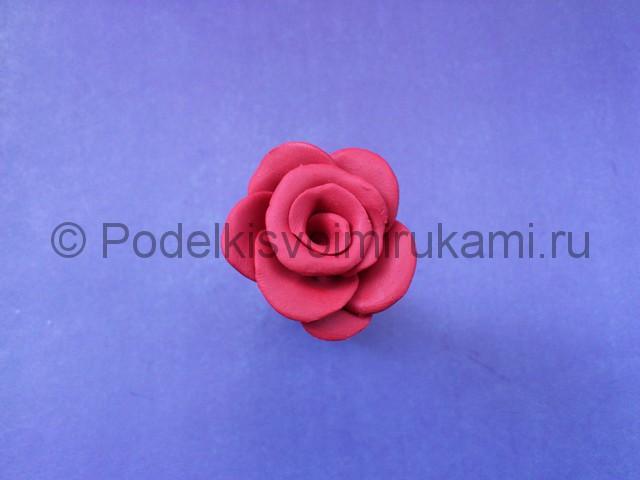 Как сделать розу из пластилина. Шаг №9.