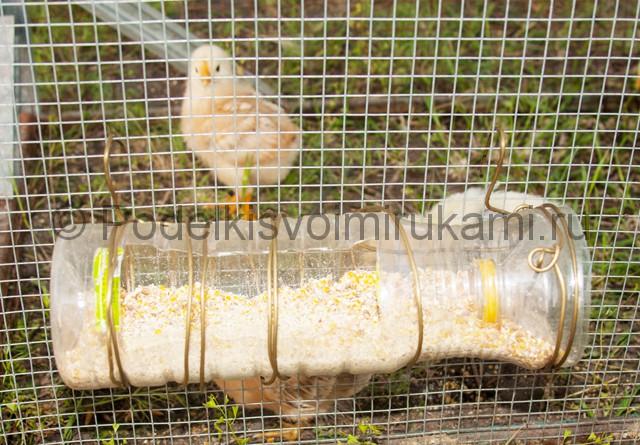 Кормушка для цыплят из пластиковой бутылки. Итоговый вид поделки. Фото 1.