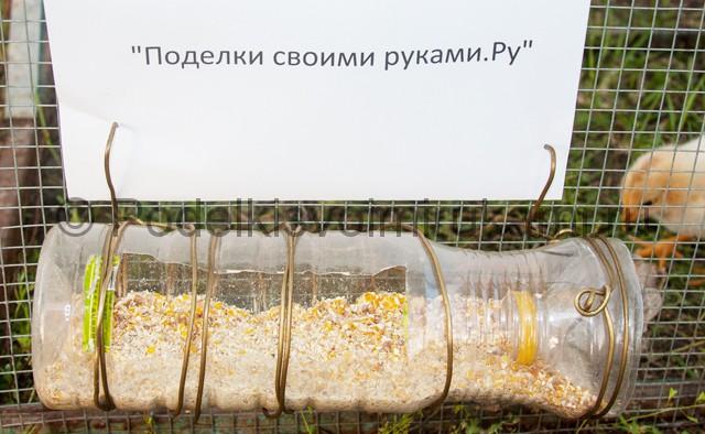 Кормушка для цыплят из пластиковой бутылки. Итоговый вид поделки. Фото 2.