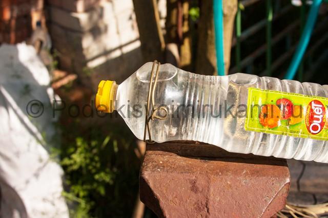 Кормушка для цыплят из пластиковой бутылки. Фото 6.
