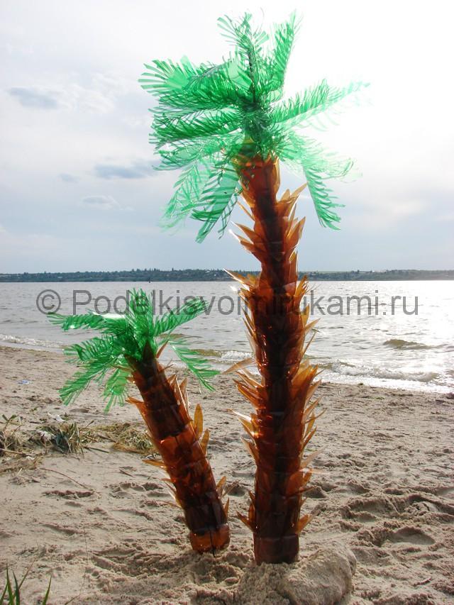 Пальма из пластиковых бутылок своими руками. Итоговый вид поделки. Фото 1.