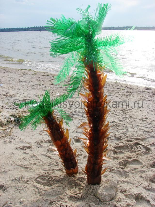 Пальма из пластиковых бутылок своими руками. Итоговый вид поделки. Фото 2.