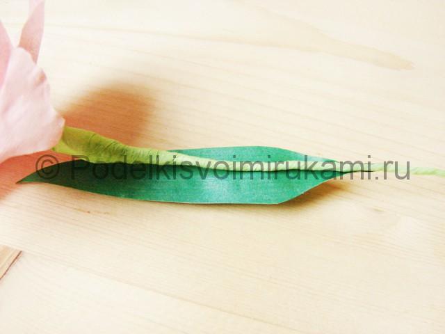 Делаем гладиолусы из бумаги - фото 28.