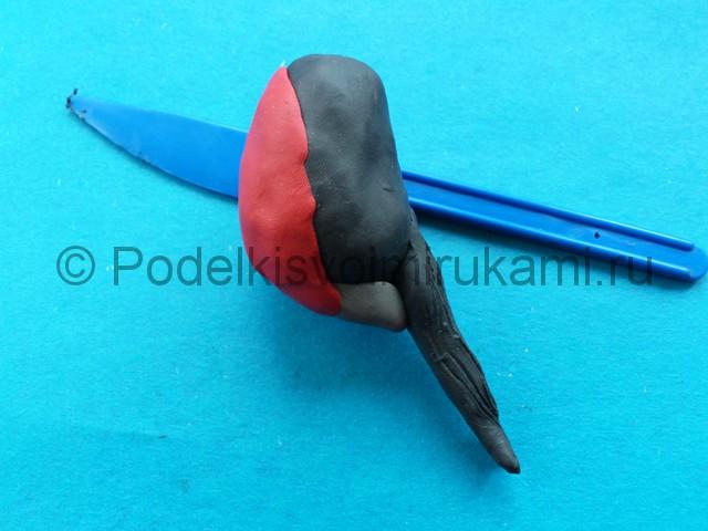 Лепка снегиря из пластилина - фото 4.