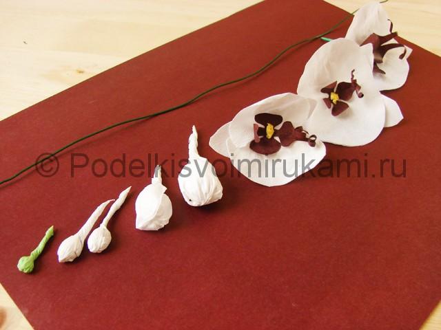 Изготовление орхидеи из бумаги - фото 31.