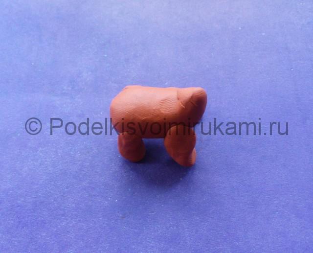 Лепка петшопа из пластилина - фото 7.