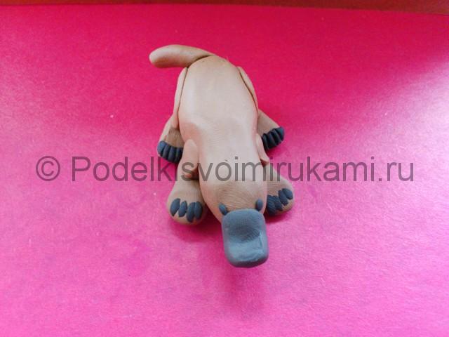 Лепка утконоса из пластилина - фото 10.