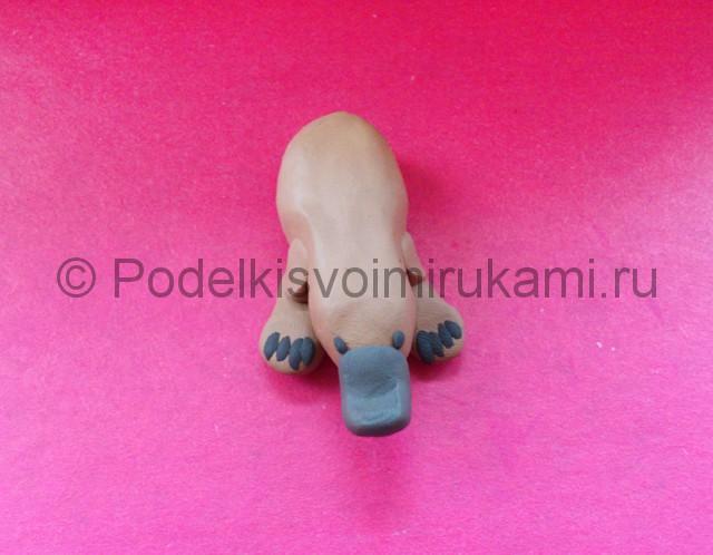 Лепка утконоса из пластилина - фото 5.