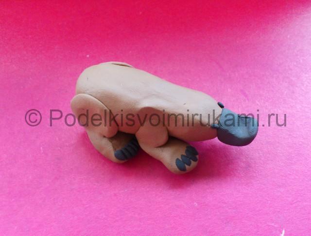 Лепка утконоса из пластилина - фото 6.