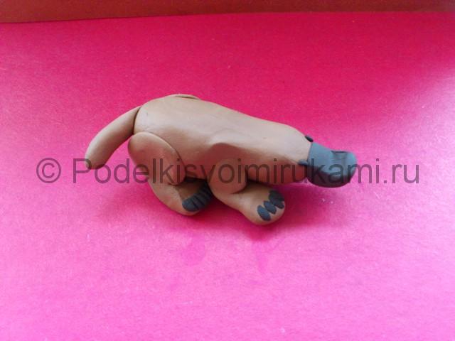 Лепка утконоса из пластилина - фото 9.