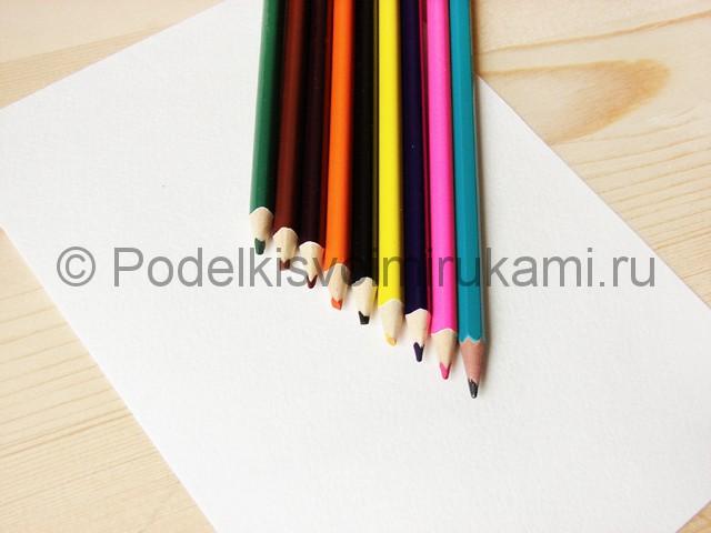 Рисуем кошку цветными карандашами - фото 1.