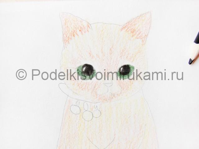 Рисуем кошку цветными карандашами - фото 10.
