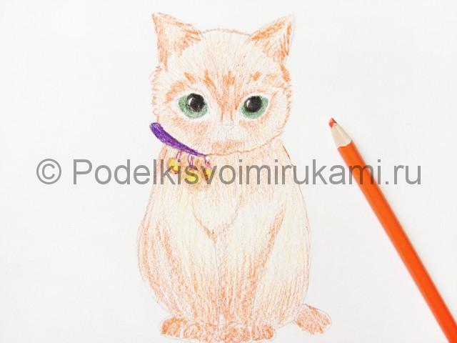 Рисуем кошку цветными карандашами - фото 12.