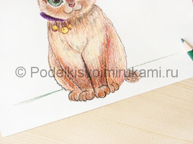 Рисуем кошку цветными карандашами - фото 18.