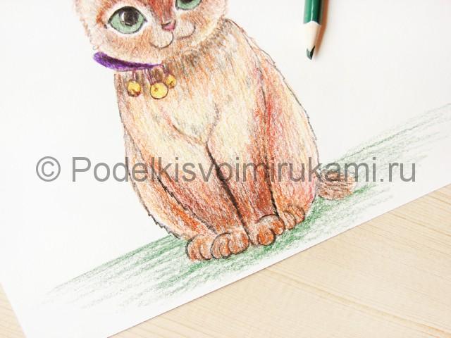 Рисуем кошку цветными карандашами - фото 19.