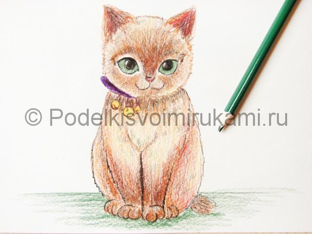 Рисуем кошку цветными карандашами - фото 20.