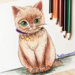 Рисунок кошки цветными карандашами.