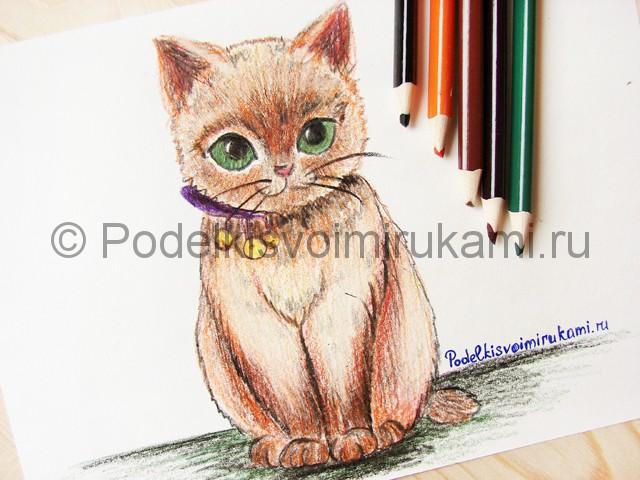 Рисуем кошку цветными карандашами - фото 24.