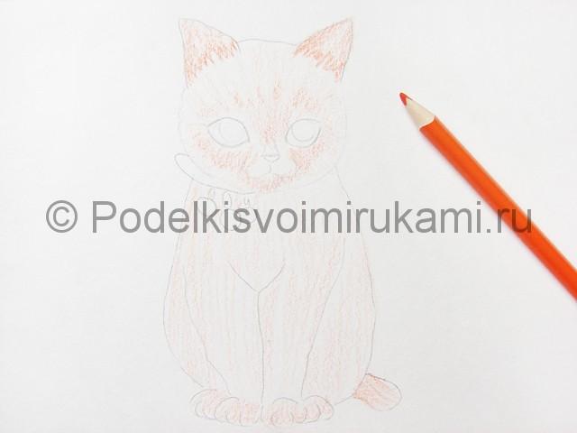 Рисуем кошку цветными карандашами - фото 7.