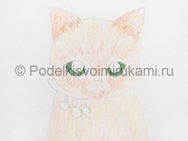 Рисуем кошку цветными карандашами - фото 9.