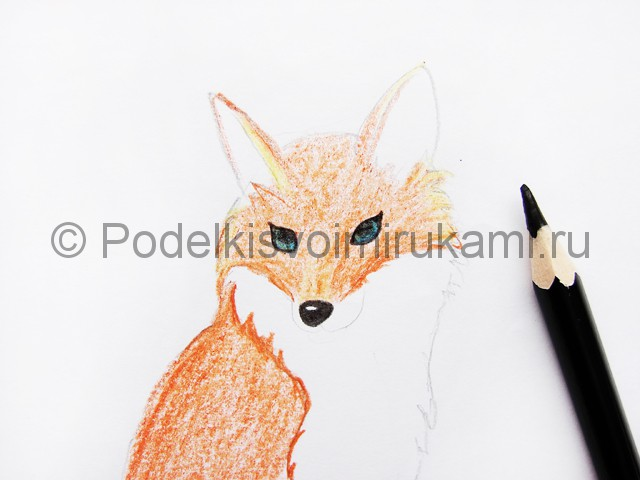 Рисуем лису цветными карандашами - фото 10.
