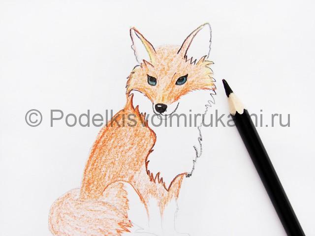 Рисуем лису цветными карандашами - фото 11.