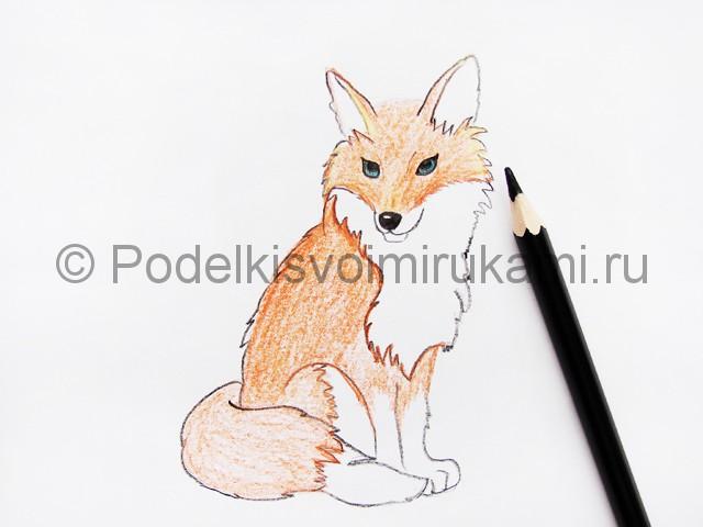 Рисуем лису цветными карандашами - фото 12.