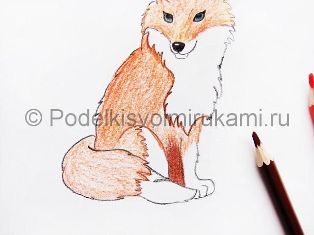 Рисуем лису цветными карандашами - фото 13.