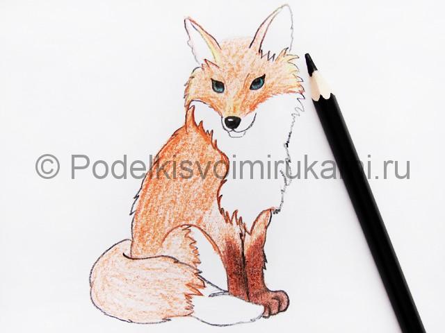Рисуем лису цветными карандашами - фото 16.