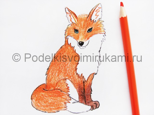Рисуем лису цветными карандашами - фото 19.