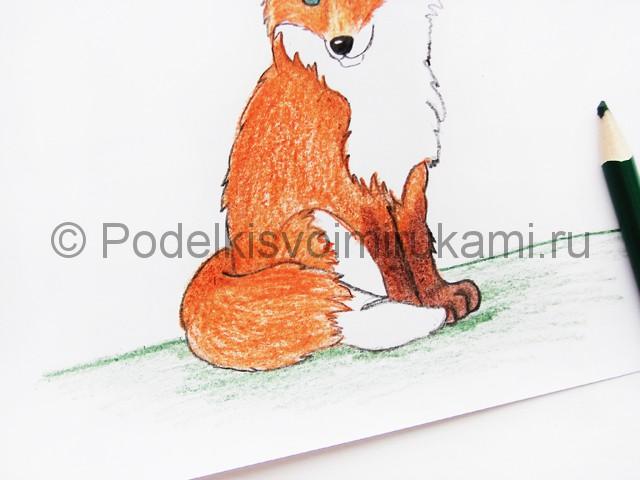 Рисуем лису цветными карандашами - фото 20.